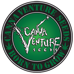 CannaVenture Seeds