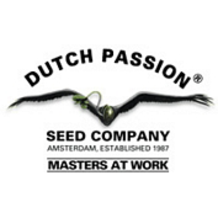 dutch_passion_collection