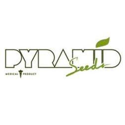 pyramid_seeds