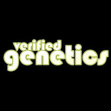 Verified Genetics Logo