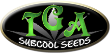 TGA Genetics Subcool Seeds