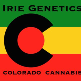 Irie Genetics